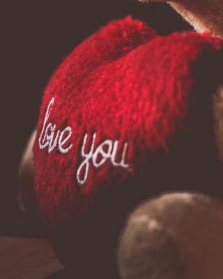Love You Plush Bear Background for Nokia C1-01
