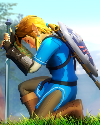 Free The Legend of Zelda Picture for Nokia Asha 306