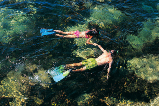 Free Couple Swimming In Caribbean Picture for Android, iPhone and iPad