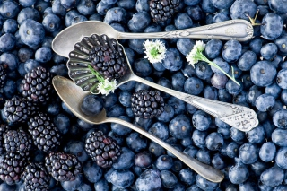 Blackberries & Blueberries Wallpaper for Android, iPhone and iPad