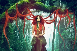 Forest Fairy sfondi gratuiti per cellulari Android, iPhone, iPad e desktop