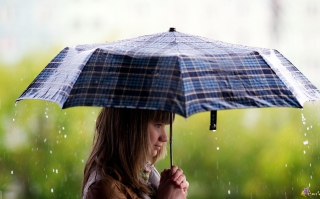 Girl With Umbrella Under The Rain Picture for 1366x768