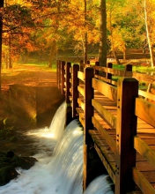 Screenshot №1 pro téma Wonderful Autumn Waterfall 176x220