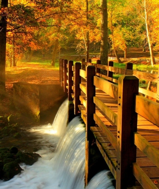 Kostenloses Wonderful Autumn Waterfall Wallpaper für 176x220