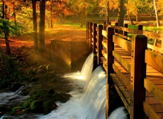Wonderful Autumn Waterfall Picture for HTC Desire HD