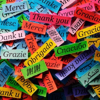 Pieces of Paper with Phrase Thank You sfondi gratuiti per 1024x1024