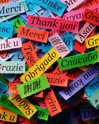 Pieces of Paper with Phrase Thank You papel de parede para celular para 750x1334