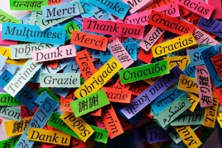Kostenloses Pieces of Paper with Phrase Thank You Wallpaper für Samsung Galaxy S6