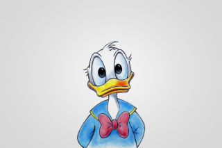 Cute Donald Duck Background for 1600x1200