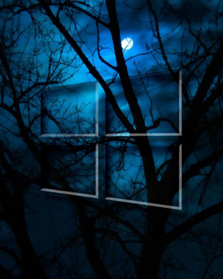 Windows 10 HD Moon Night Picture for Nokia Asha 308