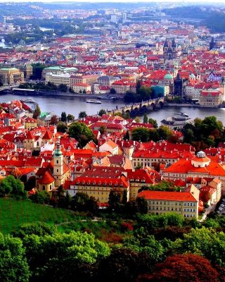 Prague Red Roofs - Fondos de pantalla gratis para iPhone 6 Plus