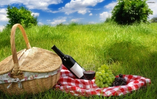 Picnic Wallpaper for Android, iPhone and iPad