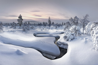 Winter River Background for Android, iPhone and iPad