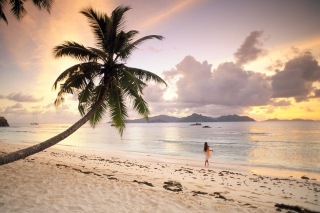 Seychelles Beach sfondi gratuiti per cellulari Android, iPhone, iPad e desktop