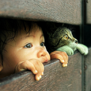 Kid and Cat - Fondos de pantalla gratis para 1024x1024