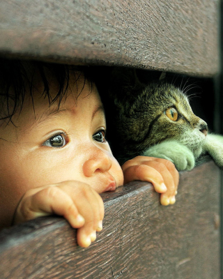 Kid and Cat Wallpaper for HTC Titan