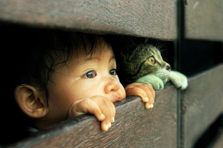Kid and Cat Wallpaper for Android, iPhone and iPad