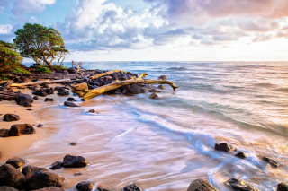 Free Sea shore and sky Picture for Desktop Netbook 1366x768 HD