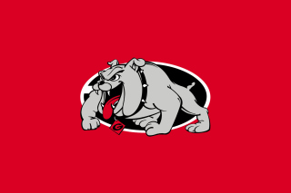 Georgia Bulldogs University Team - Fondos de pantalla gratis
