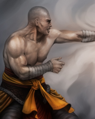 Warrior Monk by Lucas Torquato de Resende Wallpaper for Nokia Asha 202