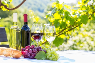 White and Red Greece Wine Picture for Android, iPhone and iPad