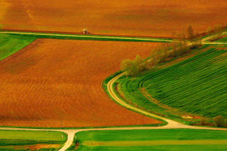 Harvest Field Background for Android, iPhone and iPad