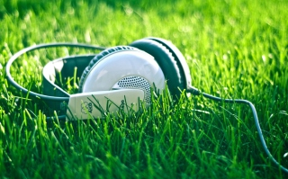 Free Headphones In Grass Picture for Android, iPhone and iPad