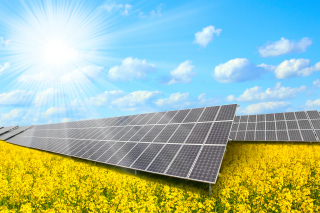 Solar panels on Field Wallpaper for Android, iPhone and iPad