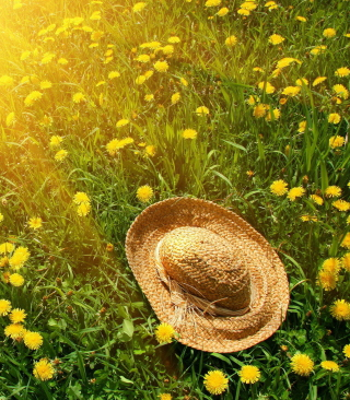 Hat On Green Grass And Yellow Dandelions - Obrázkek zdarma pro iPhone 4S