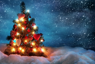 Beautiful Christmas Tree sfondi gratuiti per cellulari Android, iPhone, iPad e desktop