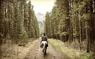 Horse Rider sfondi gratuiti per cellulari Android, iPhone, iPad e desktop