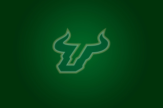 USF Bulls Club Picture for 1440x1280