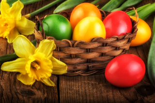 Daffodils and Easter Eggs Wallpaper for 1080x960