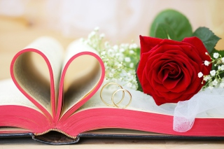 Wedding rings and book Background for Android, iPhone and iPad
