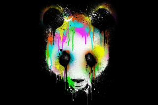 Crying Panda Wallpaper for Android, iPhone and iPad