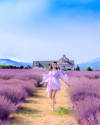 Summertime on Lavender field papel de parede para celular para iPhone 6