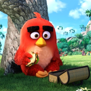 Free Angry Birds Picture for 1024x1024