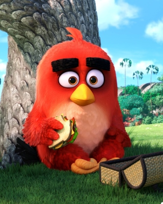 Free Angry Birds Picture for HTC Titan