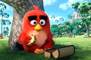 Angry Birds Background for 1400x1050