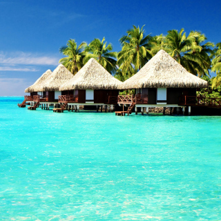 Maldives Islands best Destination for Honeymoon - Obrázkek zdarma pro 208x208