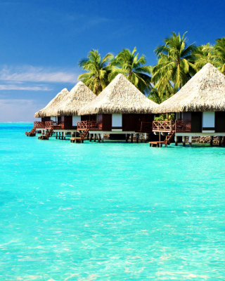 Kostenloses Maldives Islands best Destination for Honeymoon Wallpaper für Nokia C6