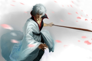 Sakata Gintoki - Gintama Picture for Android, iPhone and iPad