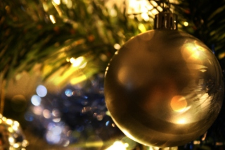 Christmas Tree Picture for Android, iPhone and iPad