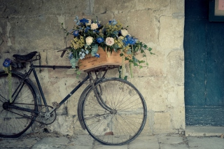 Bicycle With Basket Full Of Flowers - Fondos de pantalla gratis