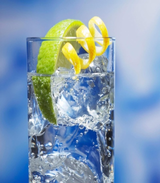 Cold Lemon Drink Wallpaper for HTC Titan