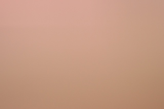 Soft Pink Wallpaper for Android 2560x1600