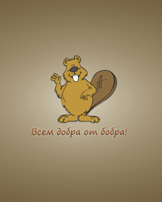 Kind Beaver Wallpaper for Nokia C1-01