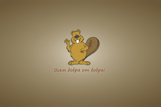 Kind Beaver Picture for Android, iPhone and iPad