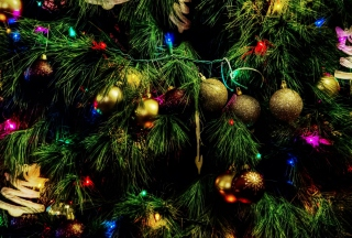 Free Christmas Tree Picture for Android, iPhone and iPad