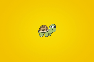 Kostenloses Turtle In Sunglasses Wallpaper für Android, iPhone und iPad